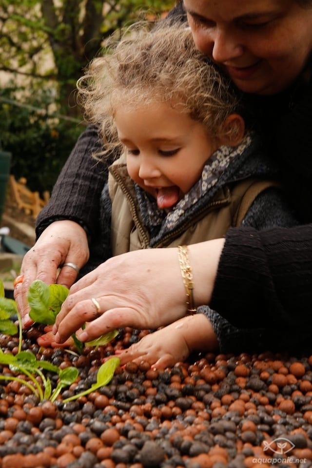 Plantation d'épinard par les enfants