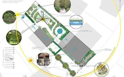 Introduire un système d'aquaponie dans son design en permaculture