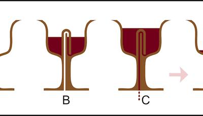 Le siphon automatique ou siphon-cloche